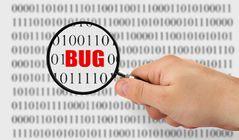 Bug (software)