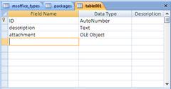 OLE Object (Access)