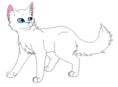 Firestar's nephew. A kittypet's son. His mate is Brightheart