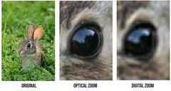 Optiese zoom