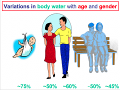 variations in Body Water depend on:   AGE  GENDER  WEIGHT  ETHNIC ORIGIN