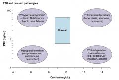 1° Hyperparathyroidism: - Hyperplasia - Adenoma - Carcinoma