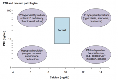 PTH-independent hypercalcemia: