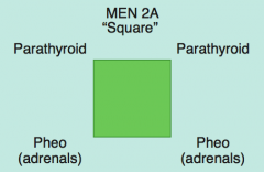 MEN 2A: 2 P's (square):
