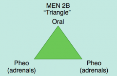 MEN 2B: 1 P (triangle):