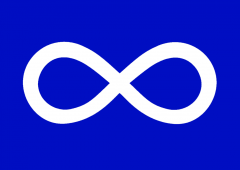 Who are the Metis?