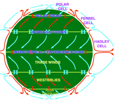 (The Coriolis force is the Earth's Rotation.)   The rotation of the Earth causes winds to be deflected westwards.    In the Northern Hemisphere, the winds and ocean currents are deflected to the right, while in the Southern Hemisphere this causes ...