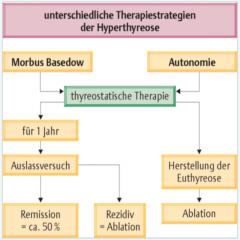 -Medikamentöse Therapie   -Radiojodtherapie   - Operative Therapie   - Symptomatische Therapie