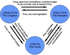 How can the judiciary check the power of the President and the Congress?