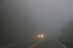 Hay neblina.