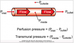It's the pressure difference across the wall of the blood vessel, or the distending pressure.