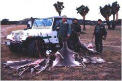 Vigilancia de Vida Silvestre en las Áreas Naturales Protegidas de Sierra Fría y Cerro del Muerto.