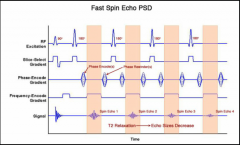 1) RF excitation pule 2) A train of echoes occurs 3) Each echo fills one row of k-space Decreases total scan time at expense of T2 blurring: the transverse magnetic signal gradually decreases for each line of the echo train.  Phase rewinding ...