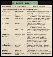 Stems:  Runner  Rhizome  Corm Tuber  Bulb    Parthenogenesis  Propagation