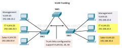 A Cisco proprietary messaging protocol used between cisco switches to communicate configuration information about the existence of VLAs, including the VLAN ID and VLAN name
