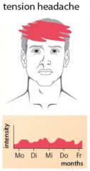 -Kopfschmerzen: Holozephal oder bifrontal- Dumpf drückend, ziehend, pressend, nicht pulsierend (Schraubstockgefühl)- Mäßige Intensität - Keine Verstärkung durch körperliche Tätigkeit - Keine vegetativen Begleitsymptome: Kein Erbr...