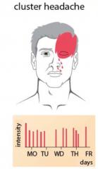 -i.d.R. 1-3 Anfälle/24h- In 50% der Fälle aus dem Schlaf heraus  - Teilweise über Monate Anfallsfreiheit -Anfallsdauer: 30-180 Min.  -Anfallscharakter: Starke, einseitige, periorbital lokalisierte Kopfschmerzen  -Zusätzlich sind a...