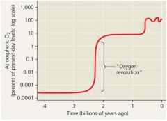 """What was the """"oxygen revolution,"""" which took place 2.3 billion years ago?   The """"oxygen revolution"""" was the rapid increase in atmospheric oxygen that took place 2.3 billion years ago, immediately preceding the origin of animals. The """"oxy..."""