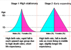 - Have classic triangular/pyramid shape  - The base of this population indicates a high birthrate and the narrow top indicates a high death rate  - Developing country  - Often have poor access to birth control, lack of education   - If sides conca...