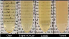 Clear Slightly cloudy: few particulates, print easily seen cloudy: manyparticulates, print blurred turbid: can't see print thru
