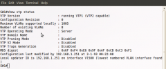 Lists VTP configuration and status information.