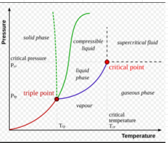 Critical point - when liquid and gas have the same densities   Triple point - where all 3 phases are in eq with each other
