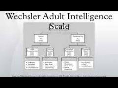 Wechsler Adult Intelligence Scale(WAIS)
