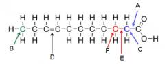 Identify A-F in the following diagram.