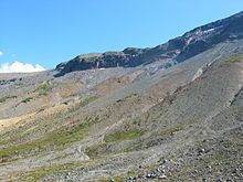 This type of slope environment (the term) is typically situated in tundras, where repeated ice upheaval has forced out plants and rocks, and is usually populated only by cushion plants.