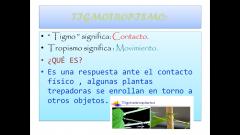 Movimiento de la planta gracias al contacto físico