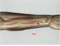 3 Tsun por encima del pliegue articular dorsal de la muñeca, por el exterior de TR 6, en el borde radial del cubito