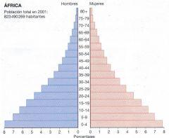 ¿Qué es la estructura de la población?