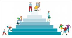 ¿Cuál es la composición por edad en la población?