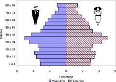 ¿Qué es composición por sexo y como se mide?