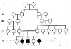 What mode of inheritance is shown below and why does it appear in the fifth generation