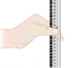 Ruler Drop