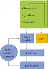Steps in the Scientific Method a.State the (PROBLEM) – Observation b.Propose a possible explanation for the problem – Hypothesis 1 c.Perform an (EXPERIMENT) – Observation d.Formulate a new or modified explanation – Hypothesis 2 e.Repeat the proc
