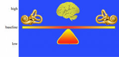 If your brain is receiving baseline level of information from each vestibular system, what do the eyes do?