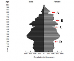 Which 'trough' in age structure of the German population in 1996 depicts the birth deficit in World War II? a.   B  b.   D c.    A d.   C