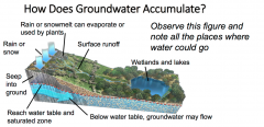 -Rain or snowmelt can evaporate or be captured by plants  - Water can flow down the surface as runoff  - Water can accumulate on the surface in wetlands and lakes  - Water can seep into the ground  - Water can reach the water table and seep ...