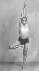 iyengar yoga teacher training introductory level 1