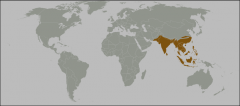 Pakistan, India, Southeast Asia, Phillipines, Indonesia, west of the Wallace Line (Sumatra, Java, Borneo)