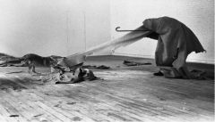 "Joseph Beuys, ""Coyote (I Like America, America Likes Me)"" 1974. Performance."