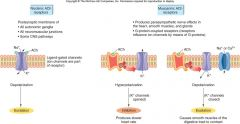 1) Nicotinic   Ligand-gated ion channel   Fast transmission   2) Muscarinic   GP-coupled   Slow