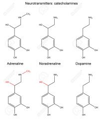 Both are catecholamines, they have a catechol group   Adrenalin has a additional methyl group