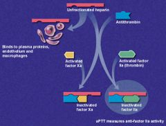 hepatin binds to both ATIII and thrombin, Forms an inactive Thrombin complex