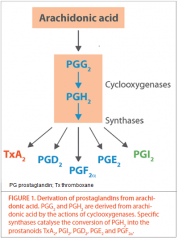 Avoid reducing COX enzyme in epithelium too much   Too much would prevent Prostacyclin being producing