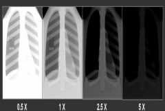 Which of these films are properly exposed?