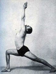 iyengar yoga teacher training introductory level 1