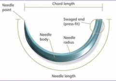-Press fitted end (swage)   -Body (Circle size)   -Needlepoint